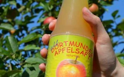Lust auf Apfelbäume schütteln und Äpfel aufheben?
